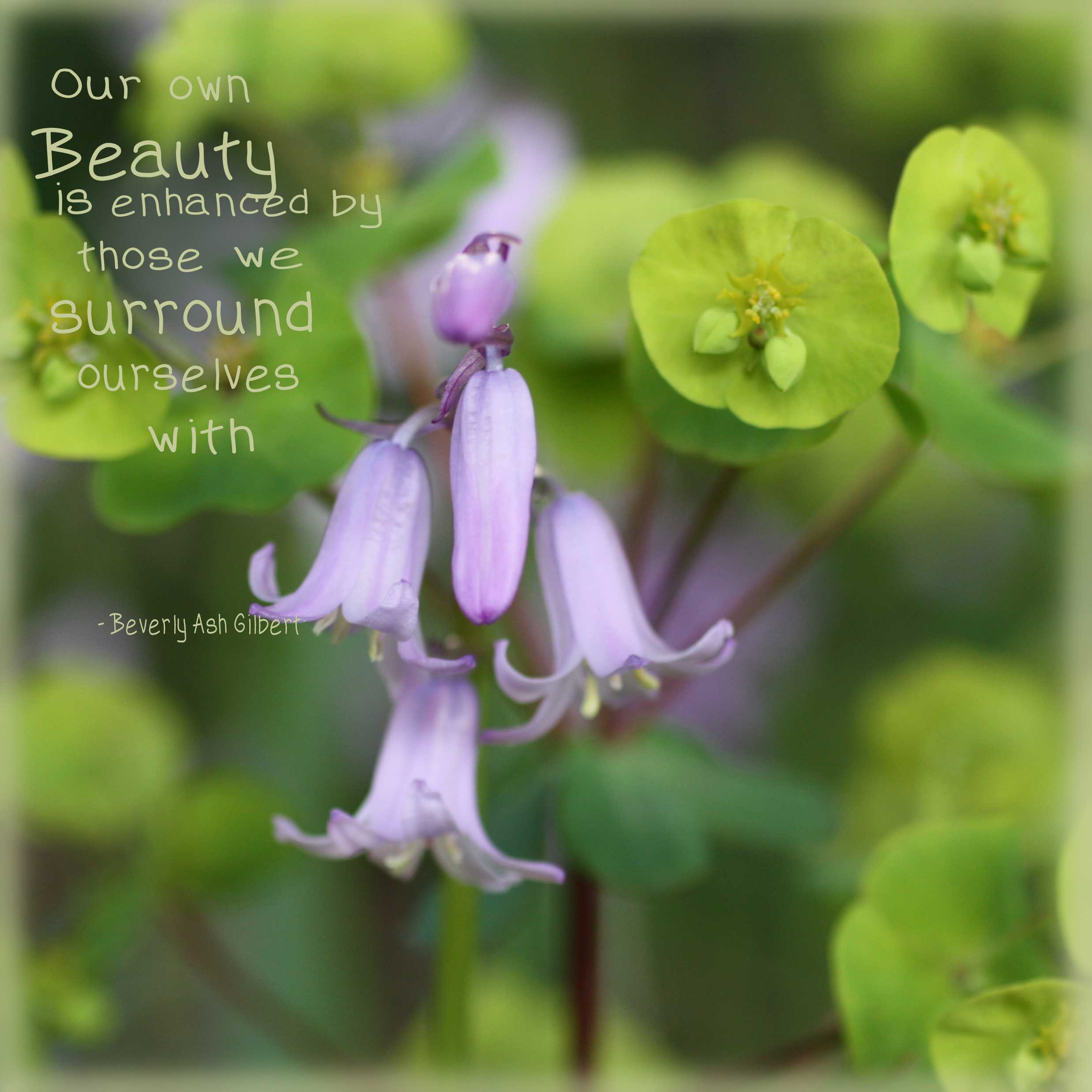 Positive_Inspiration_BeautyEnhanced.jpg