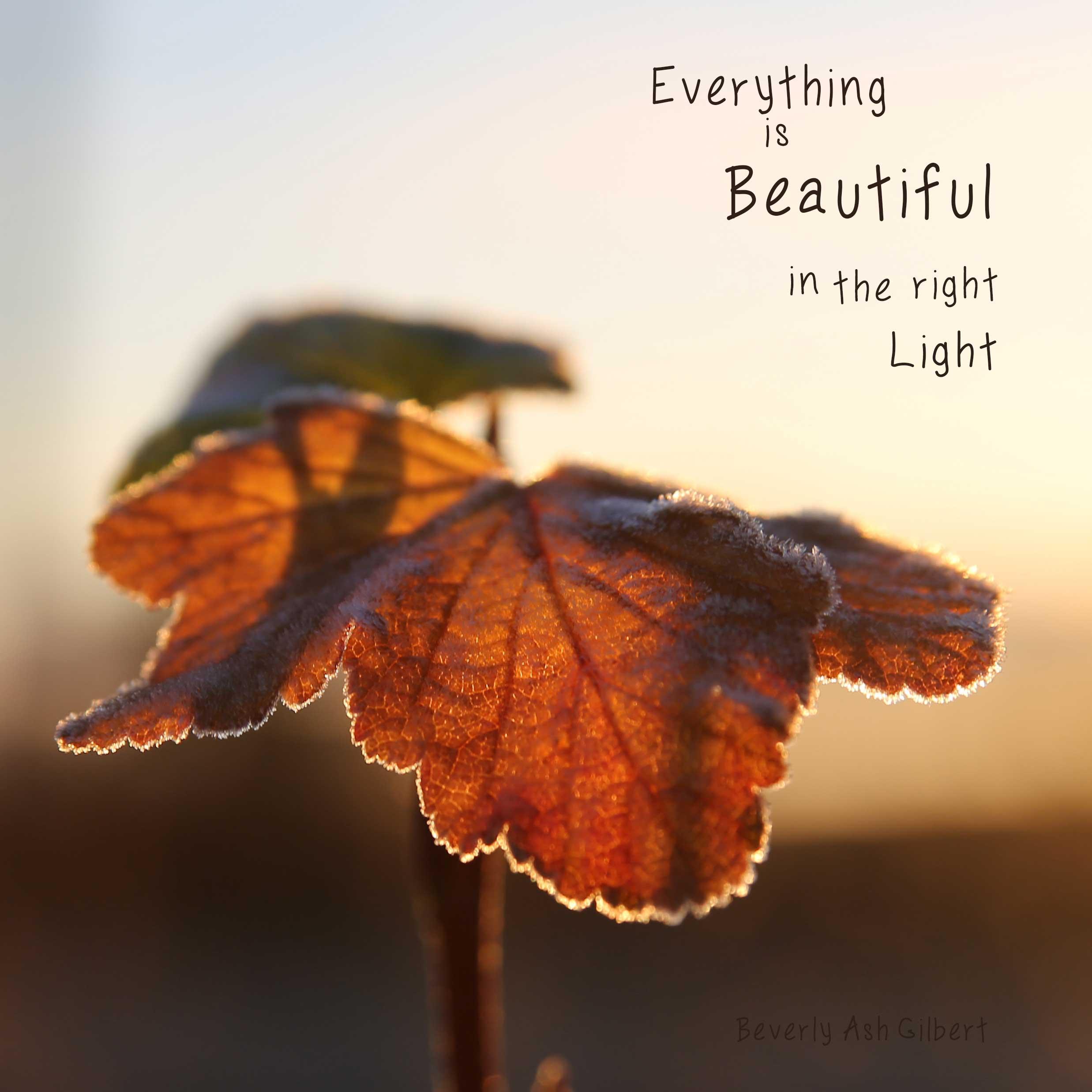Positive_Inspiration_BeautyRightLight.jpg