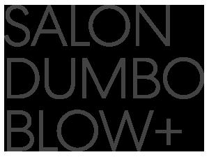 SalonDumbo-BlowPlus-Grey.png