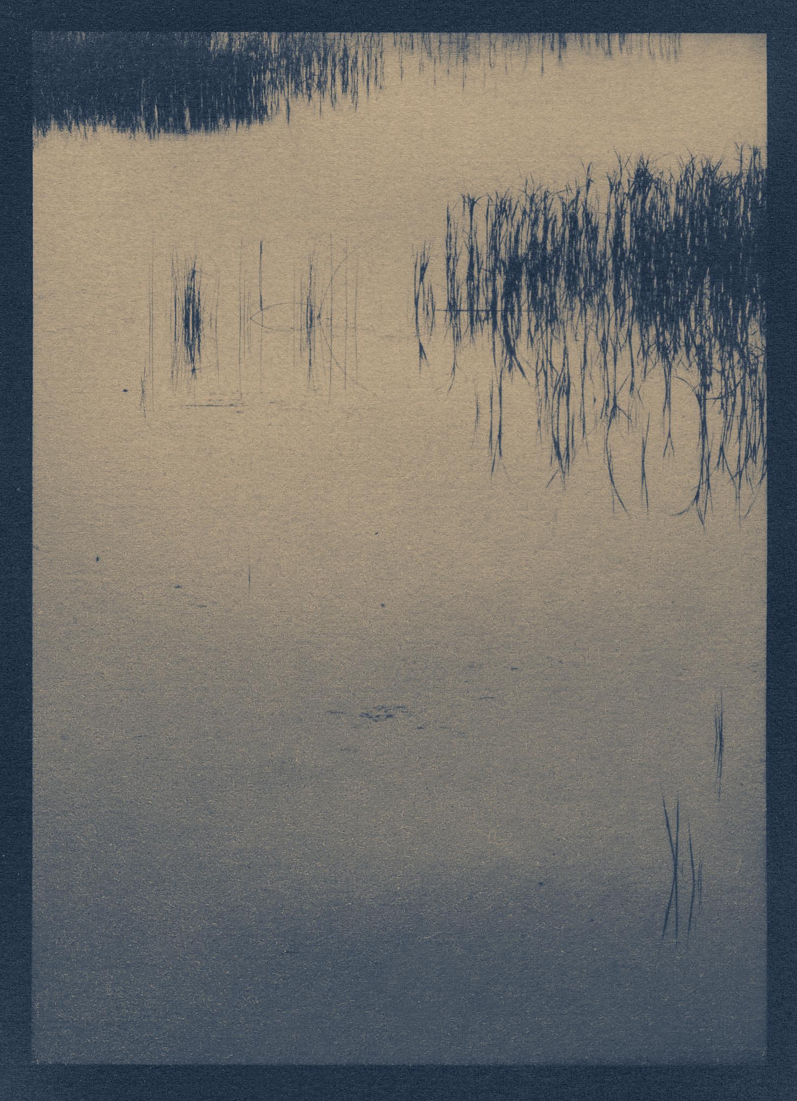 nahant_black_tea_toned_cyanotype 1039.jpg