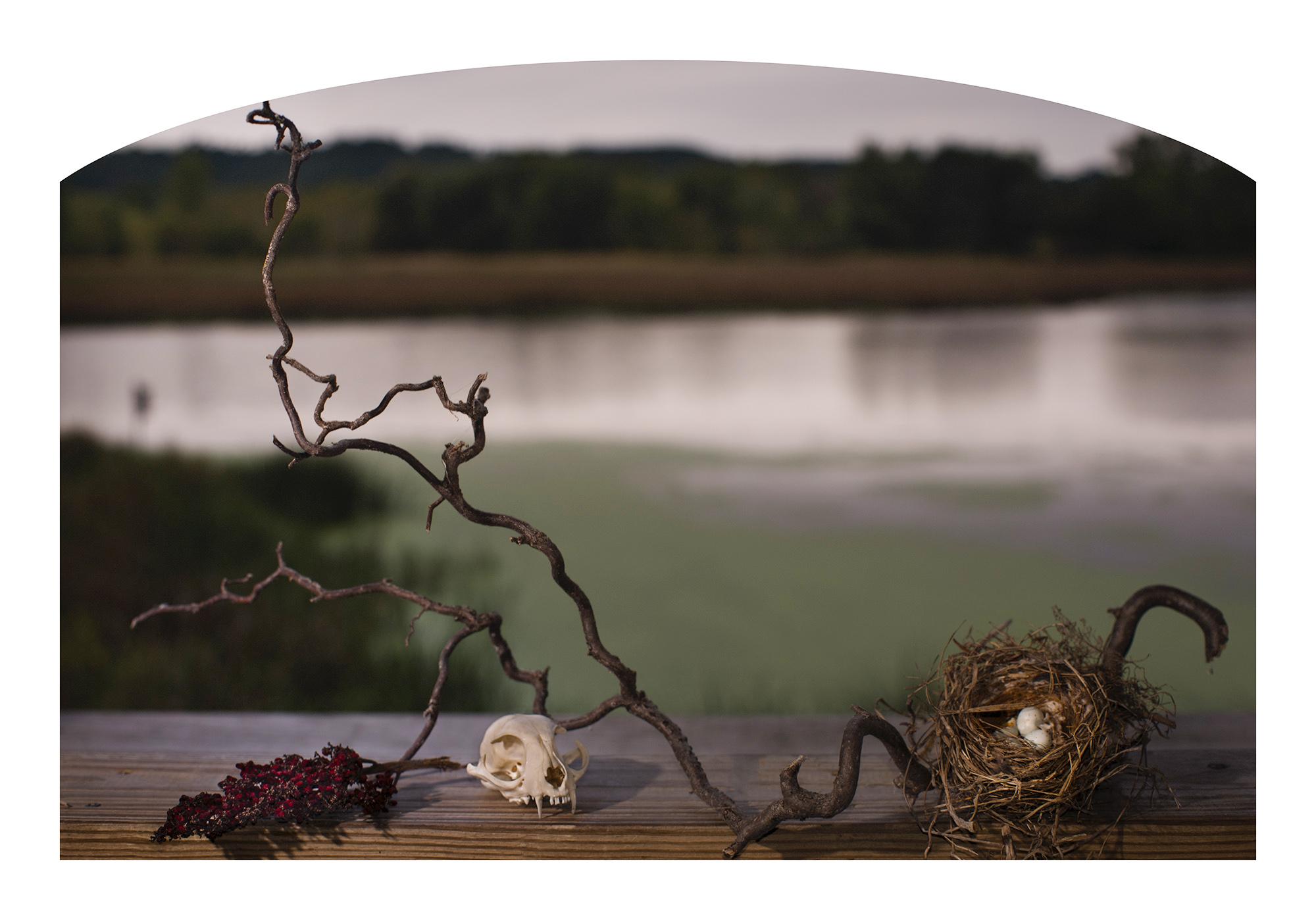title: 10/03/2017 8:20 AM  image size: 36x24  paper size: 40x28  (Hahnemühle Bamboo)   archival pigment print