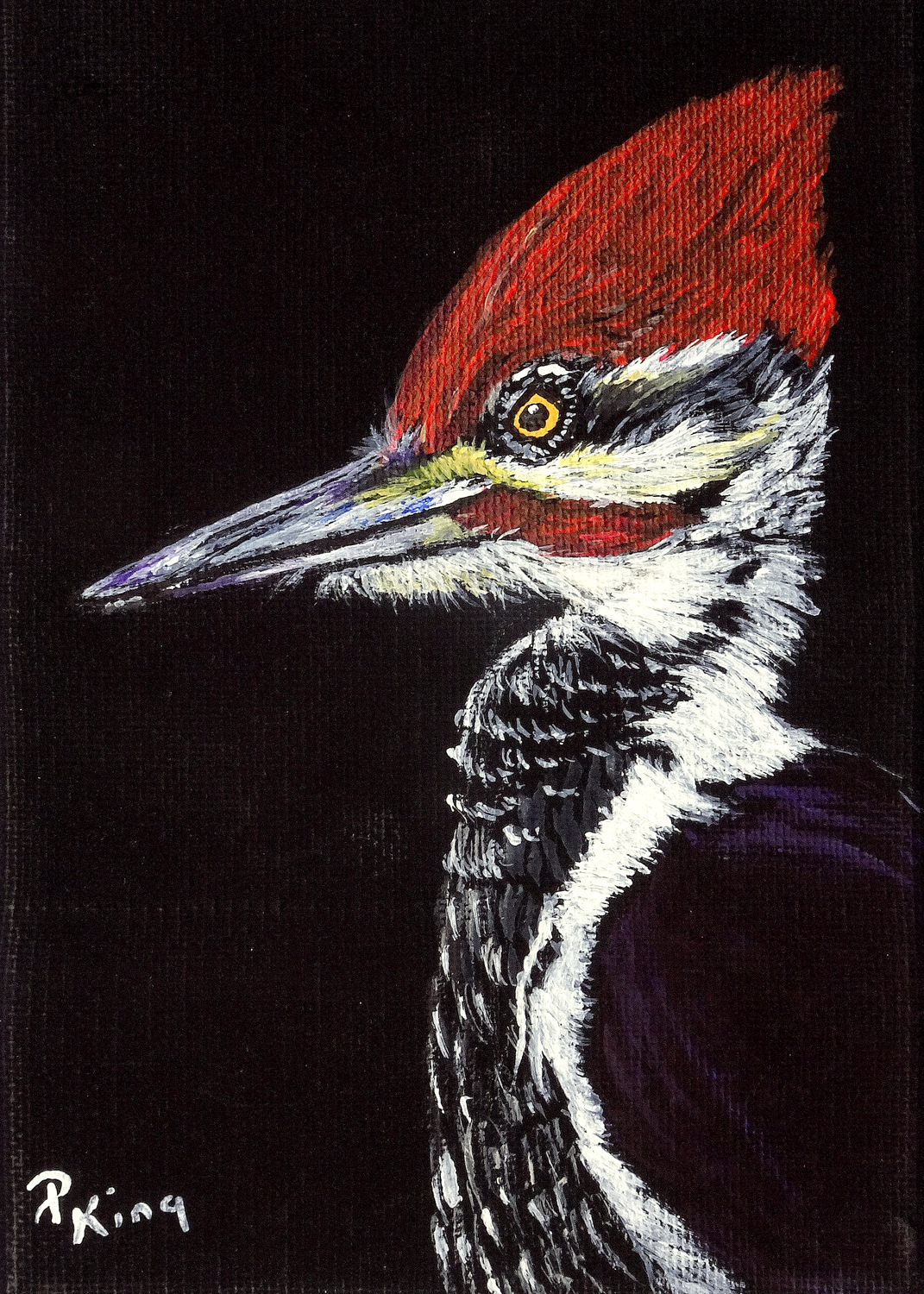 """""""PILEATED WOODPECKER"""",  Acrylic on Wrapped Canvas,  5x7x5/8 inches,  $75"""