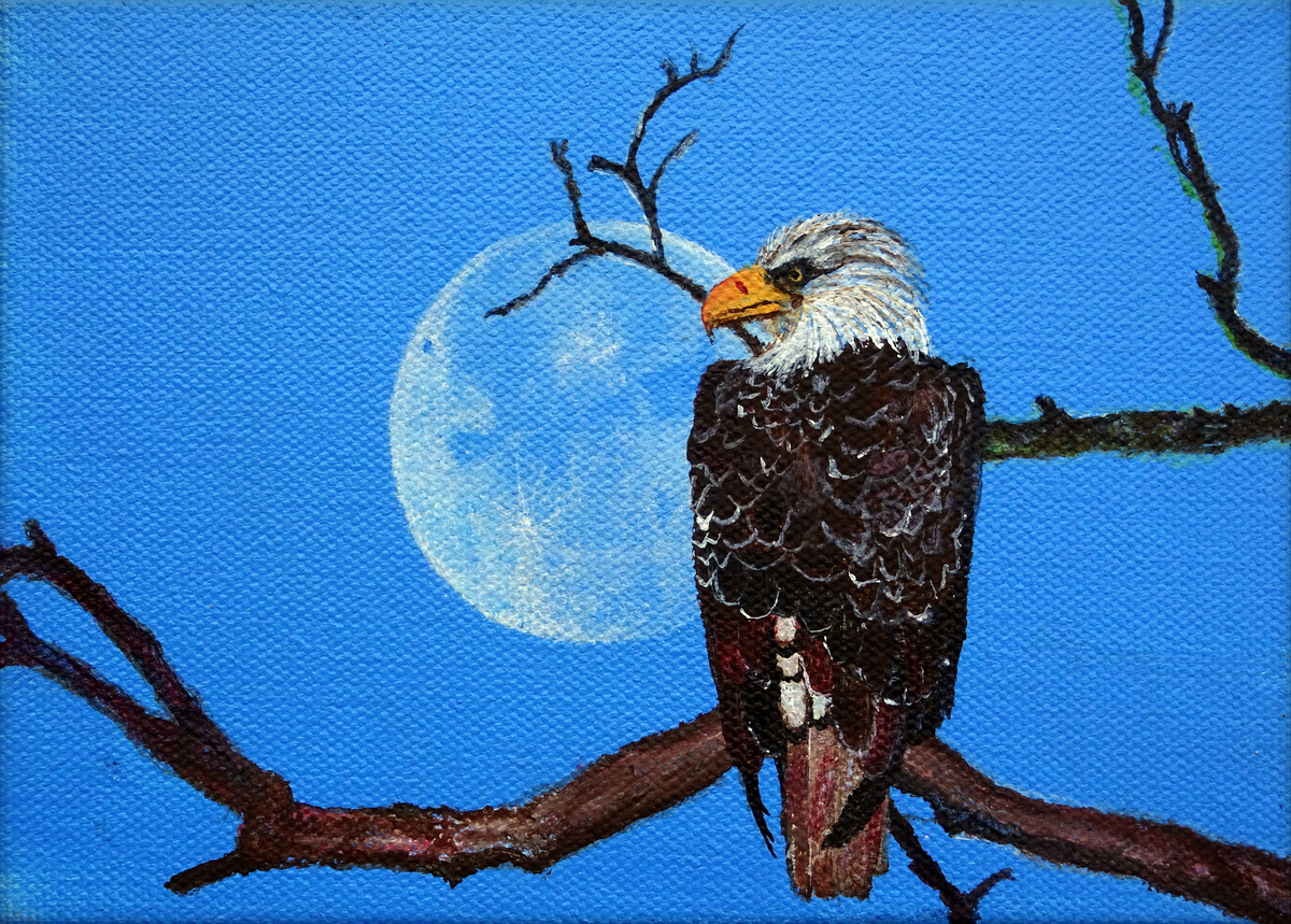 """""""EAGLE"""",  Acrylic on Wrapped Canvas,  7x5x1.5 inches,  $75"""