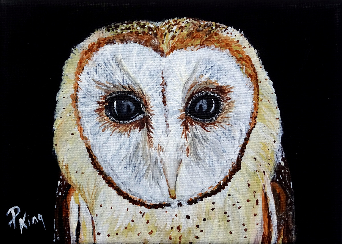 """""""BARN OWL"""",  Acrylic on Wrapped Canvas,  7x5x5/8 inches,  SOLD"""