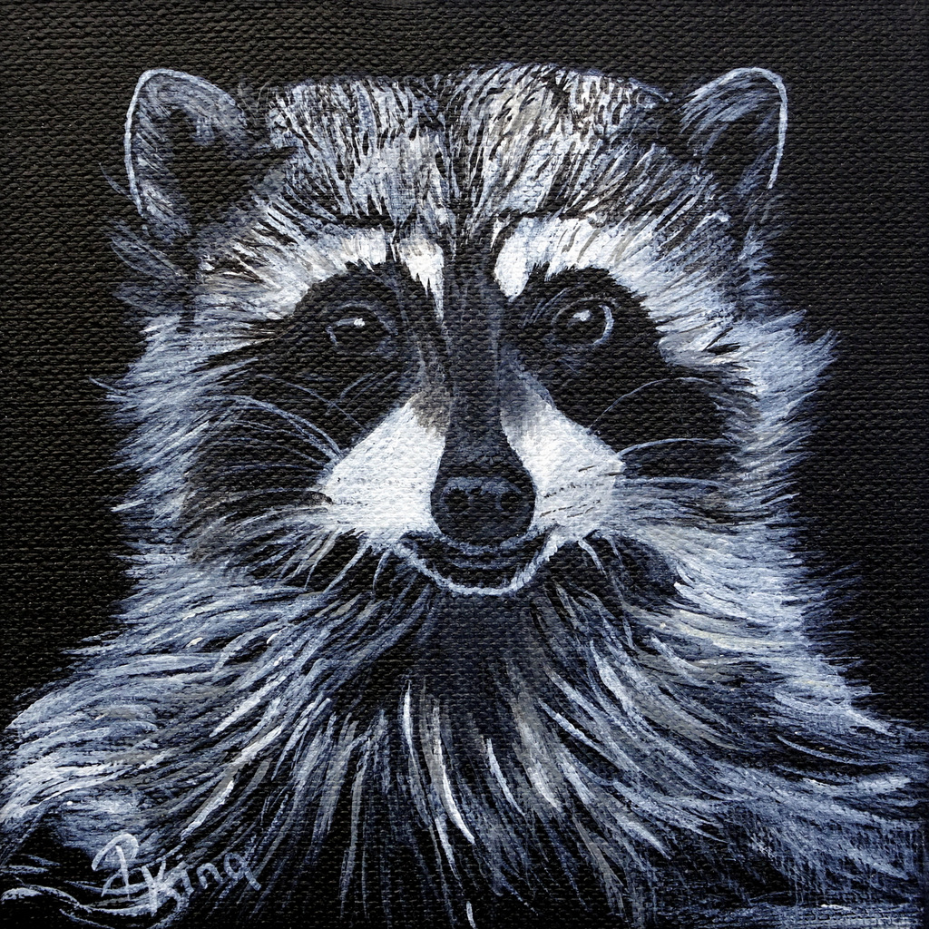 """""""RACOON"""",  Acrylic on Wrapped Canvas,  6x6x5/8 inches,  $75"""