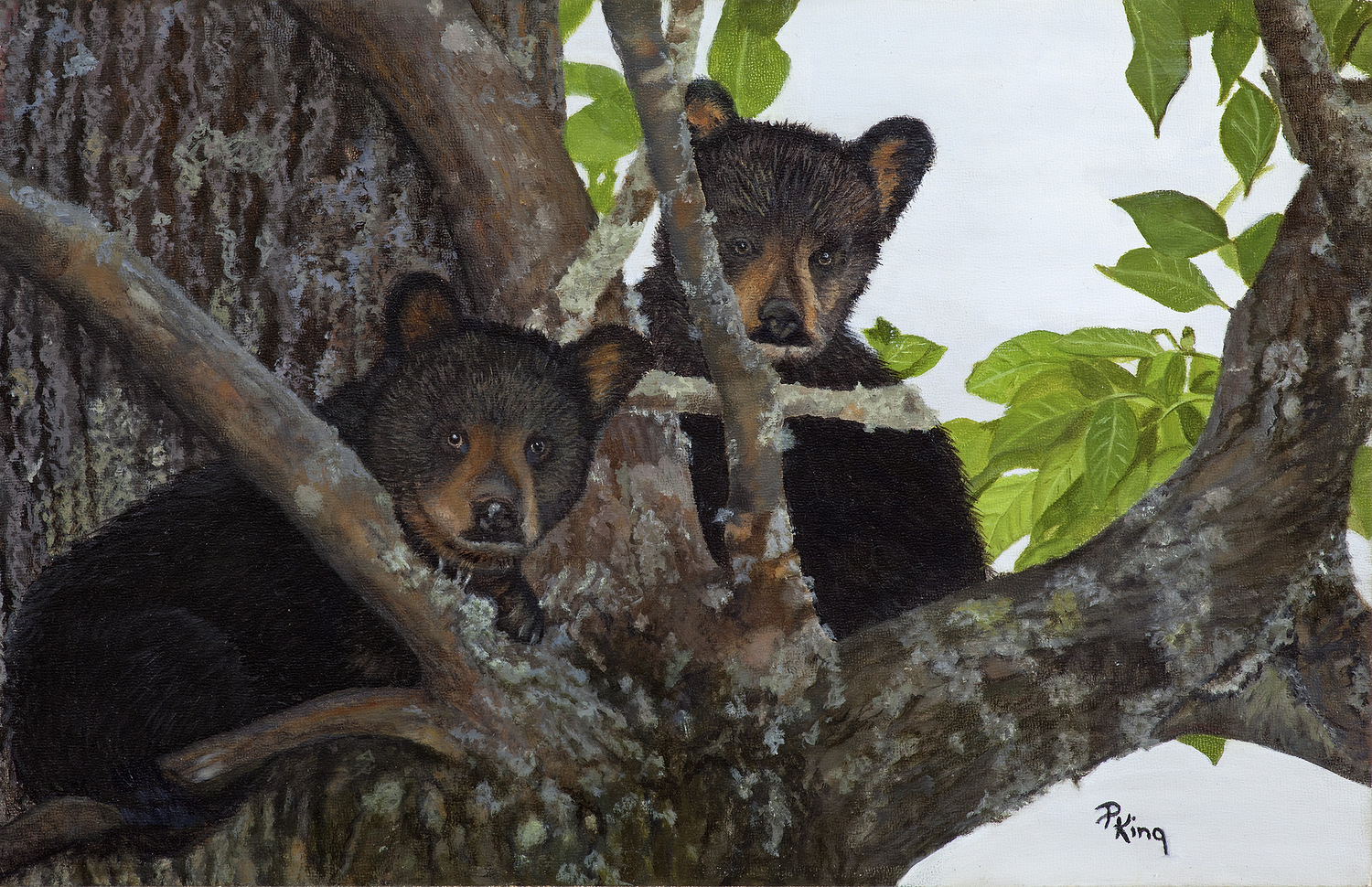 """""""BEAR NECESSITY"""",  Giclee Print on Paper,  9x14 inches,  $75"""