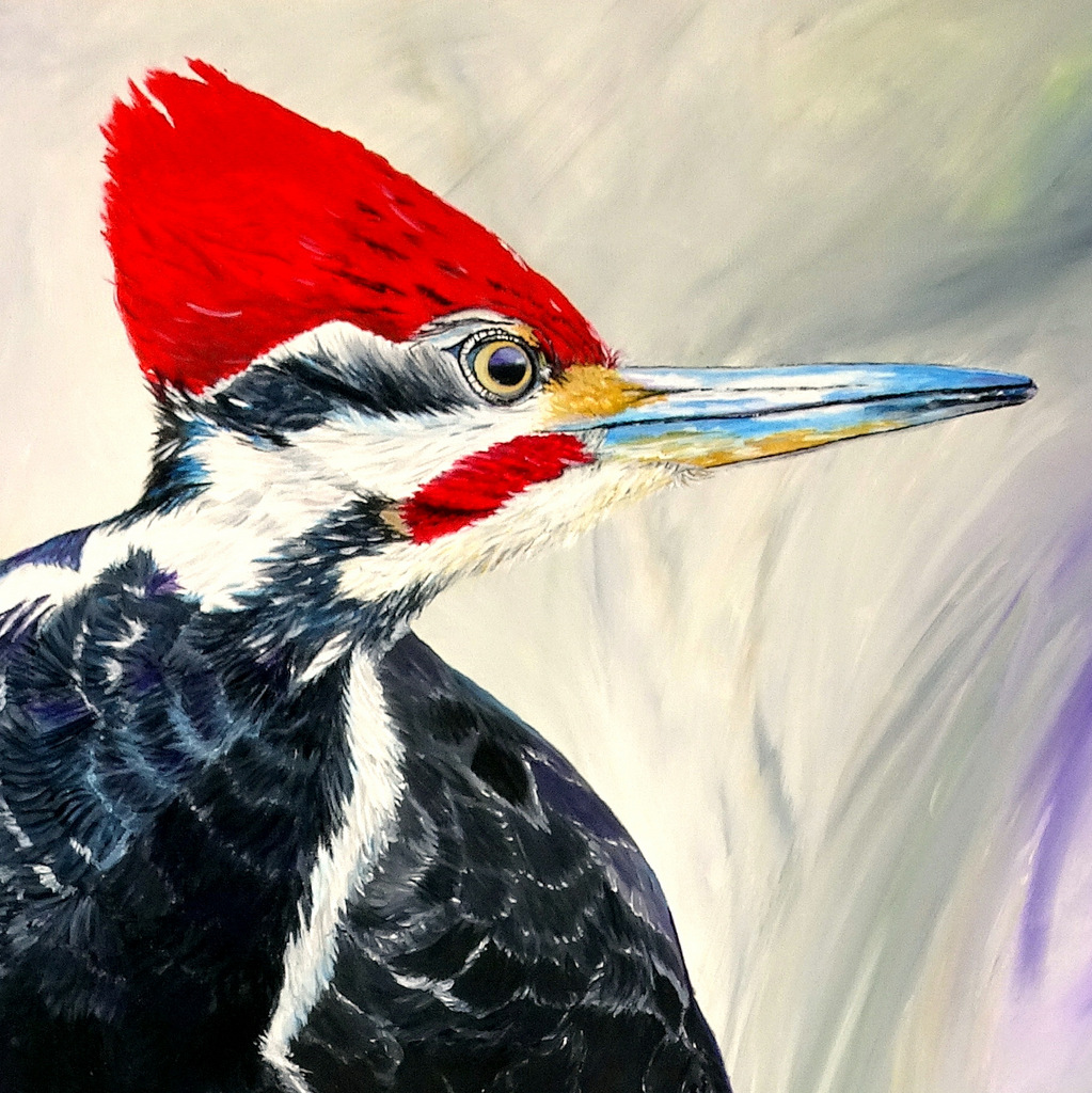 Detail of Pileated Woodpecker Fine Art Painting