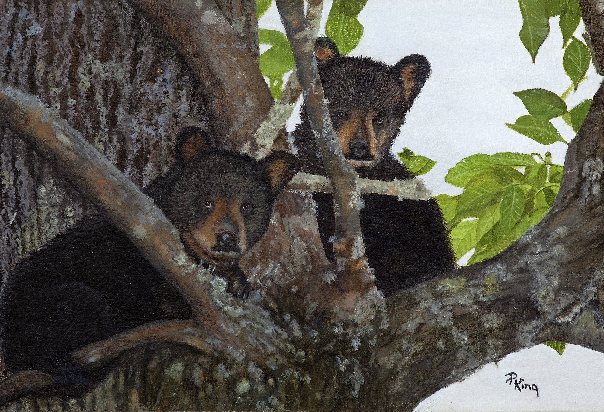 Wildlife Painting, Black Bears, Peggy King - Fine Art Painting