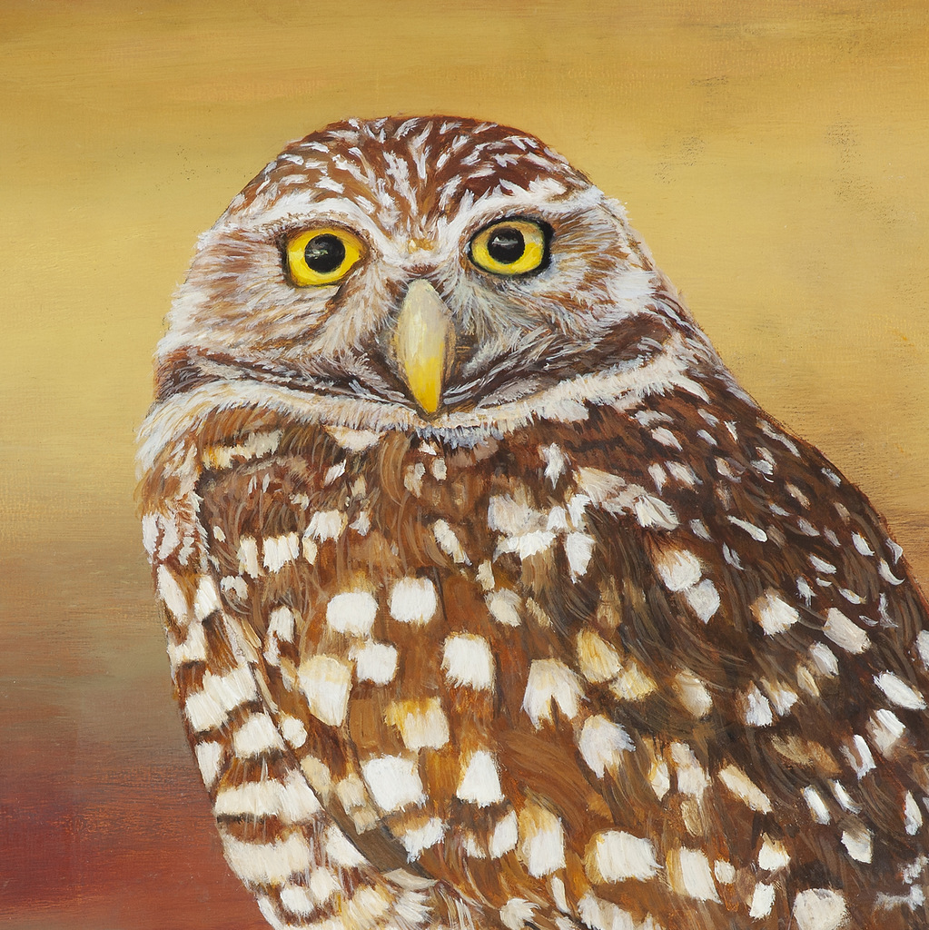 1-OWL - Realist Nature & Wildlife Painting, Peggy King, Asheville, NC-001.JPG