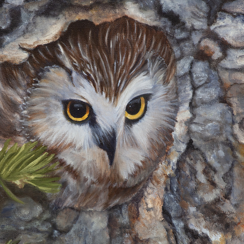 3-OWL - Realist Nature & Wildlife Painting, Peggy King, Asheville, NC-003.JPG