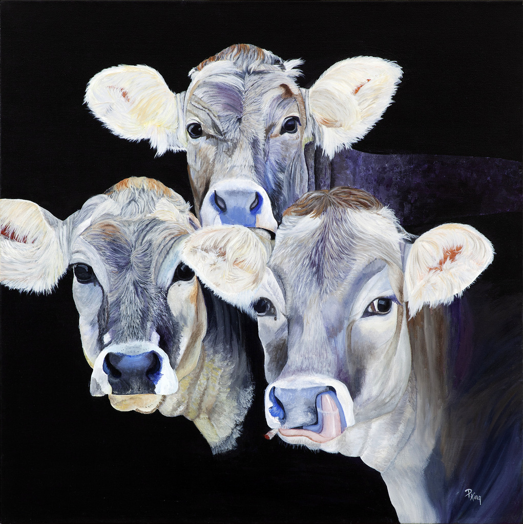 """""""COWS IN THE WEEDS"""",  Oil/Acrylic on Wrapped Canvas,  24x24 inches,  $750"""
