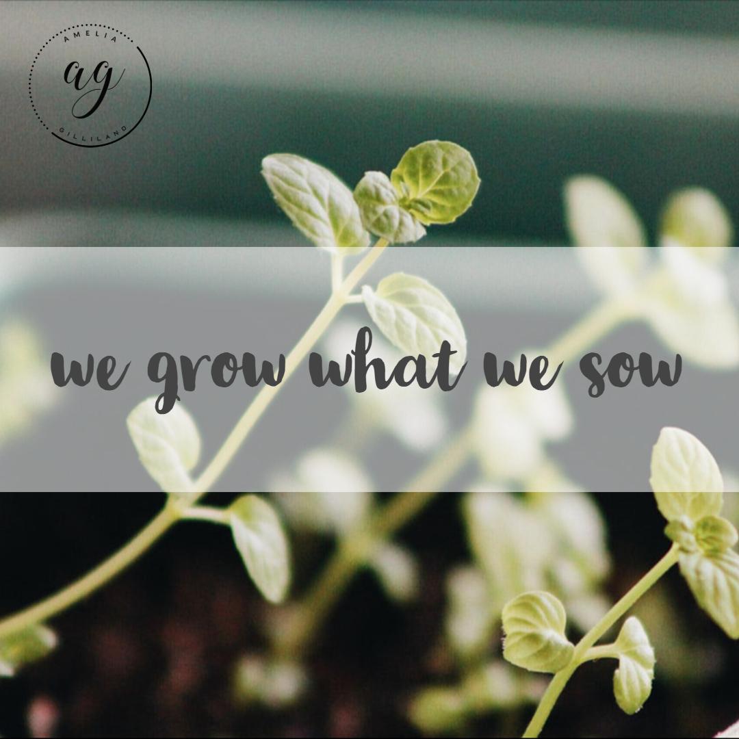 growsow.jpg