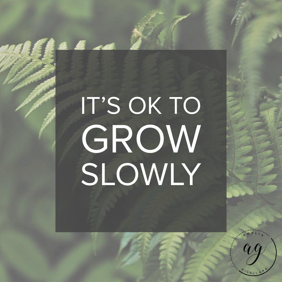 grow slowly.jpg