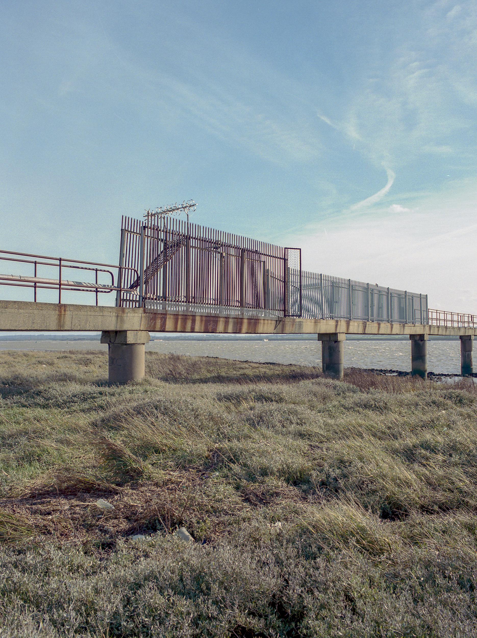 fences march 2019-8.JPG