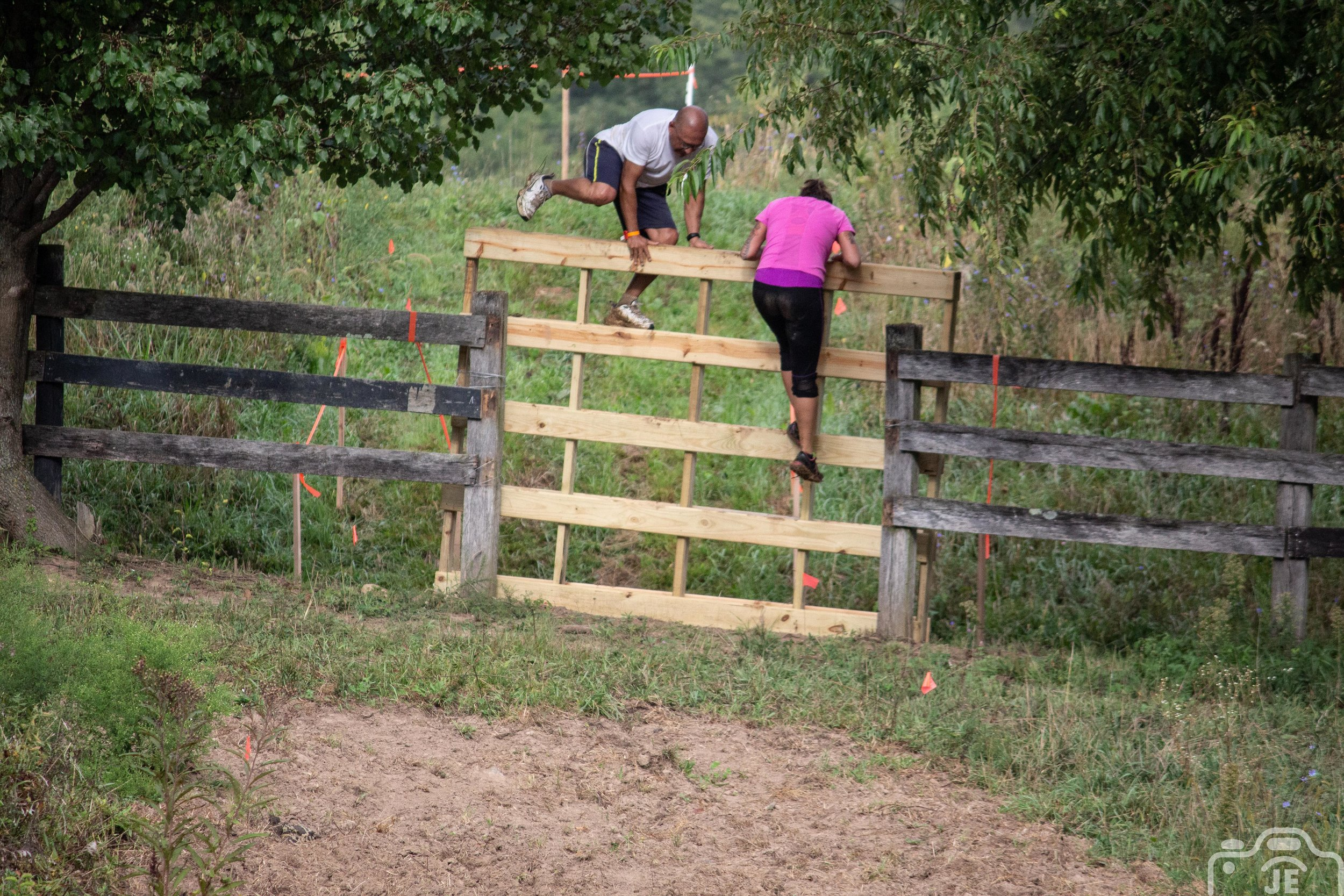 fence climb.jpg