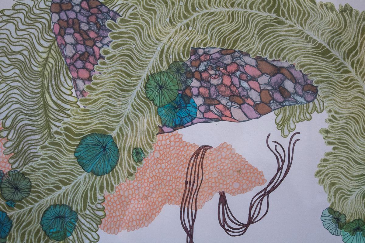 demma_hannah_biology-24.jpg
