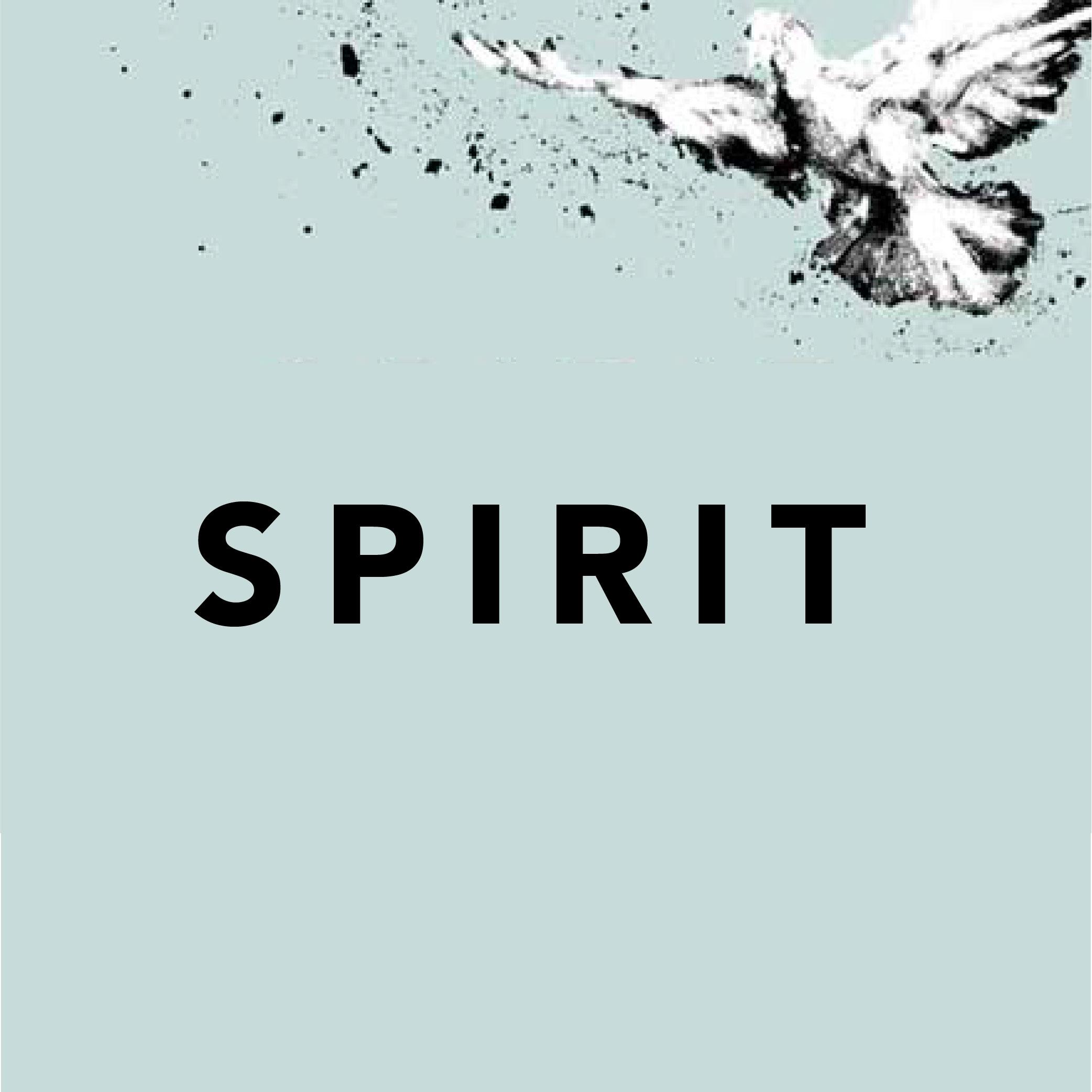 SPIRIT-01.jpg