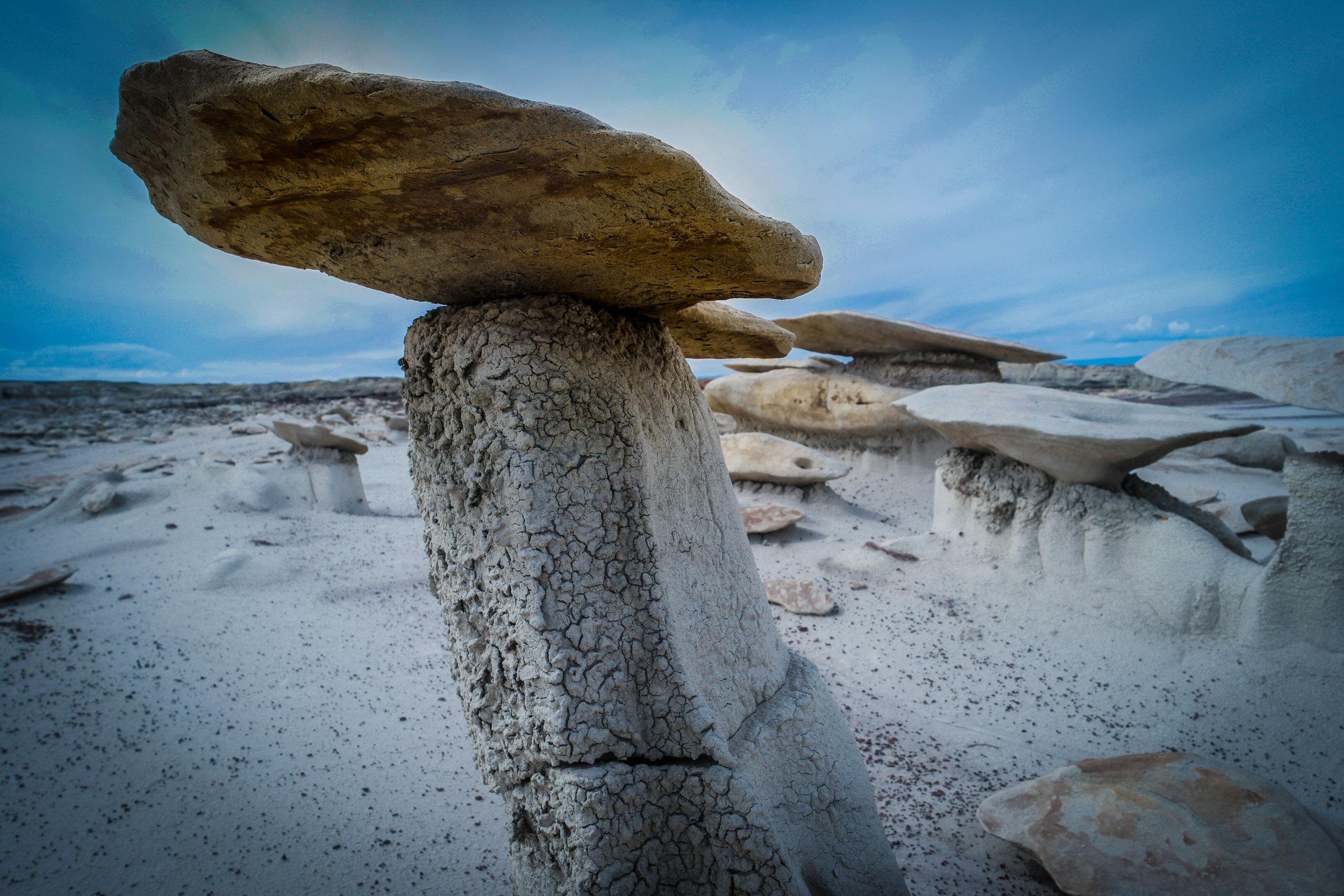 Mushroom Rocks_Bisti Badlands_NM.jpg