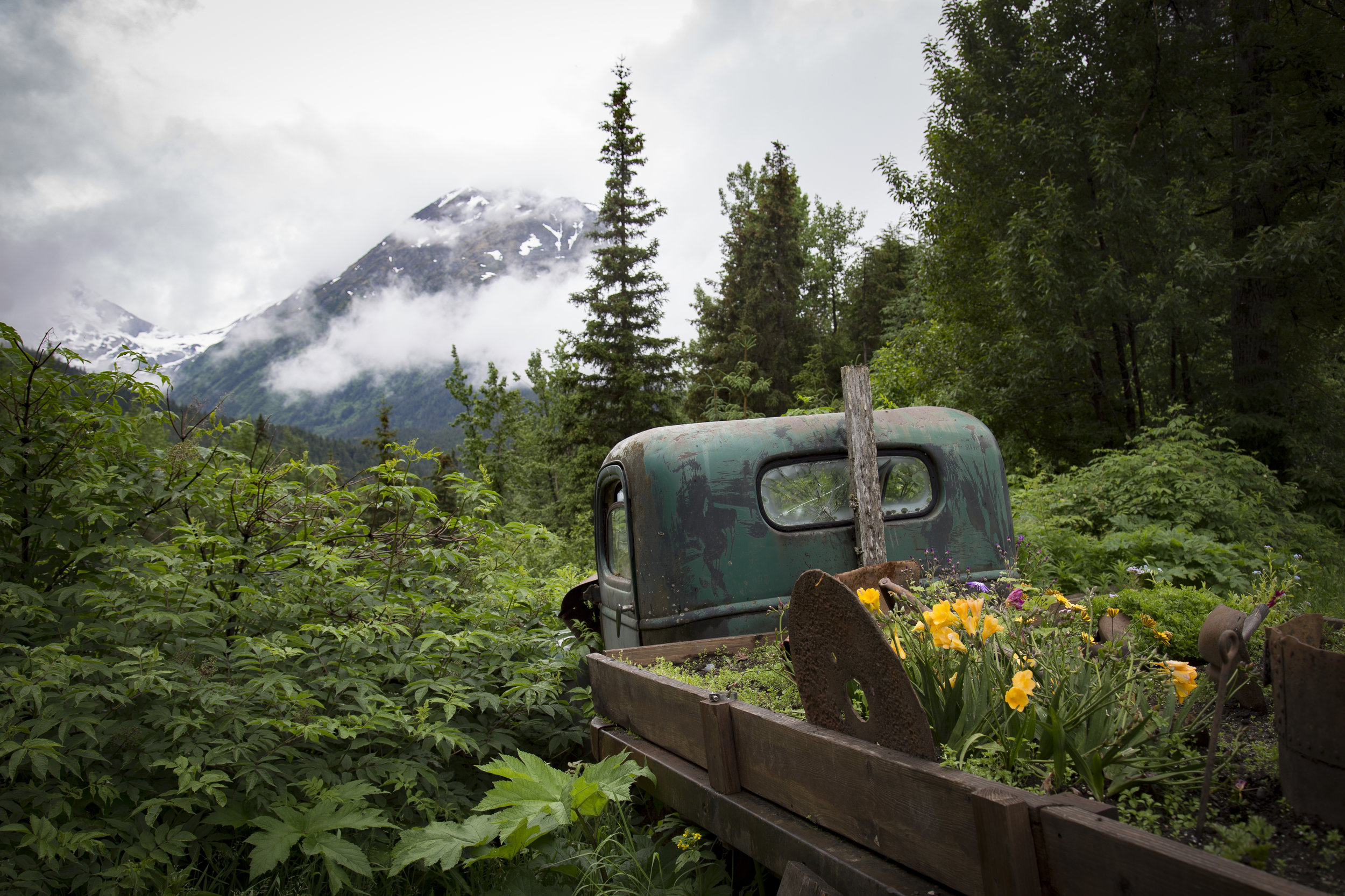 Alaskan Flower Pot.jpg