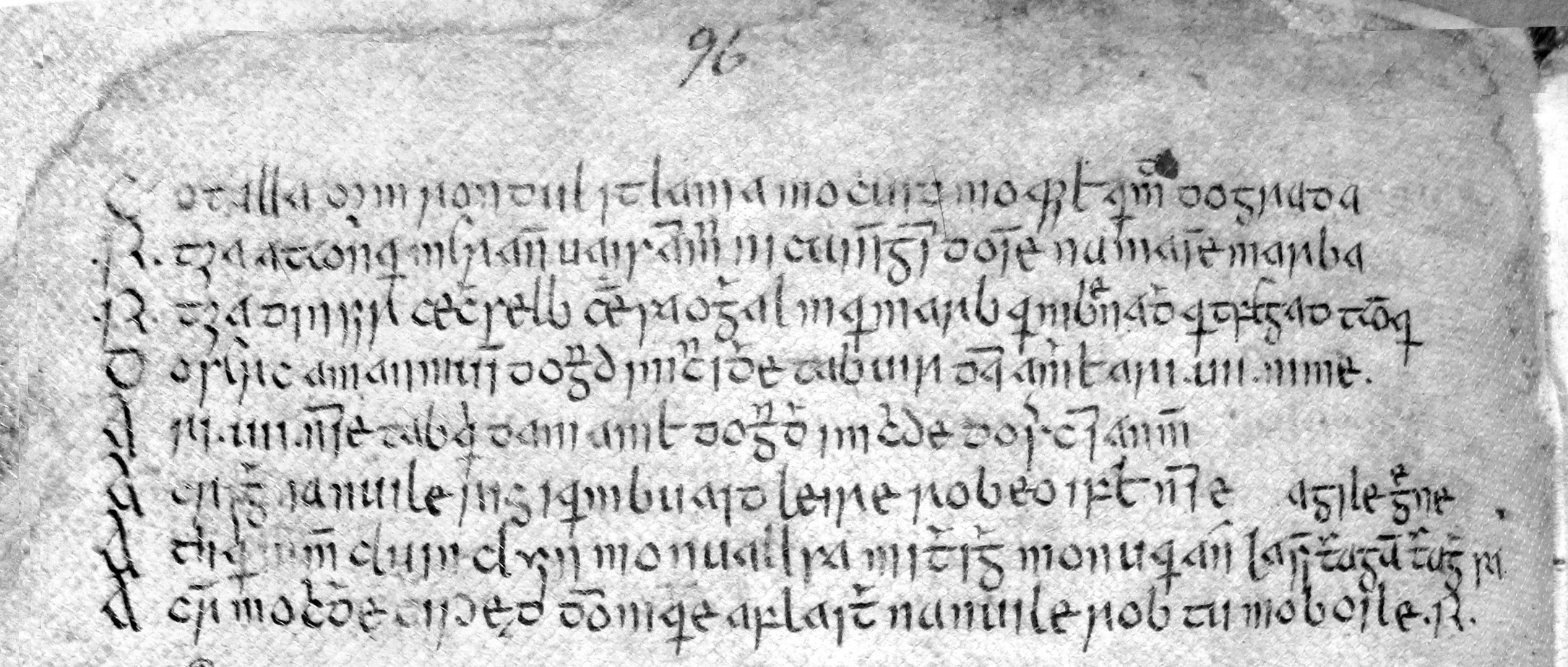 Fig. 1.  Royal Irish Academy 23 N 10 (16th century), pp. 95-96.