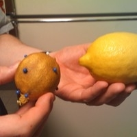 The lemon on the left started out looking just like the lemon on the right!