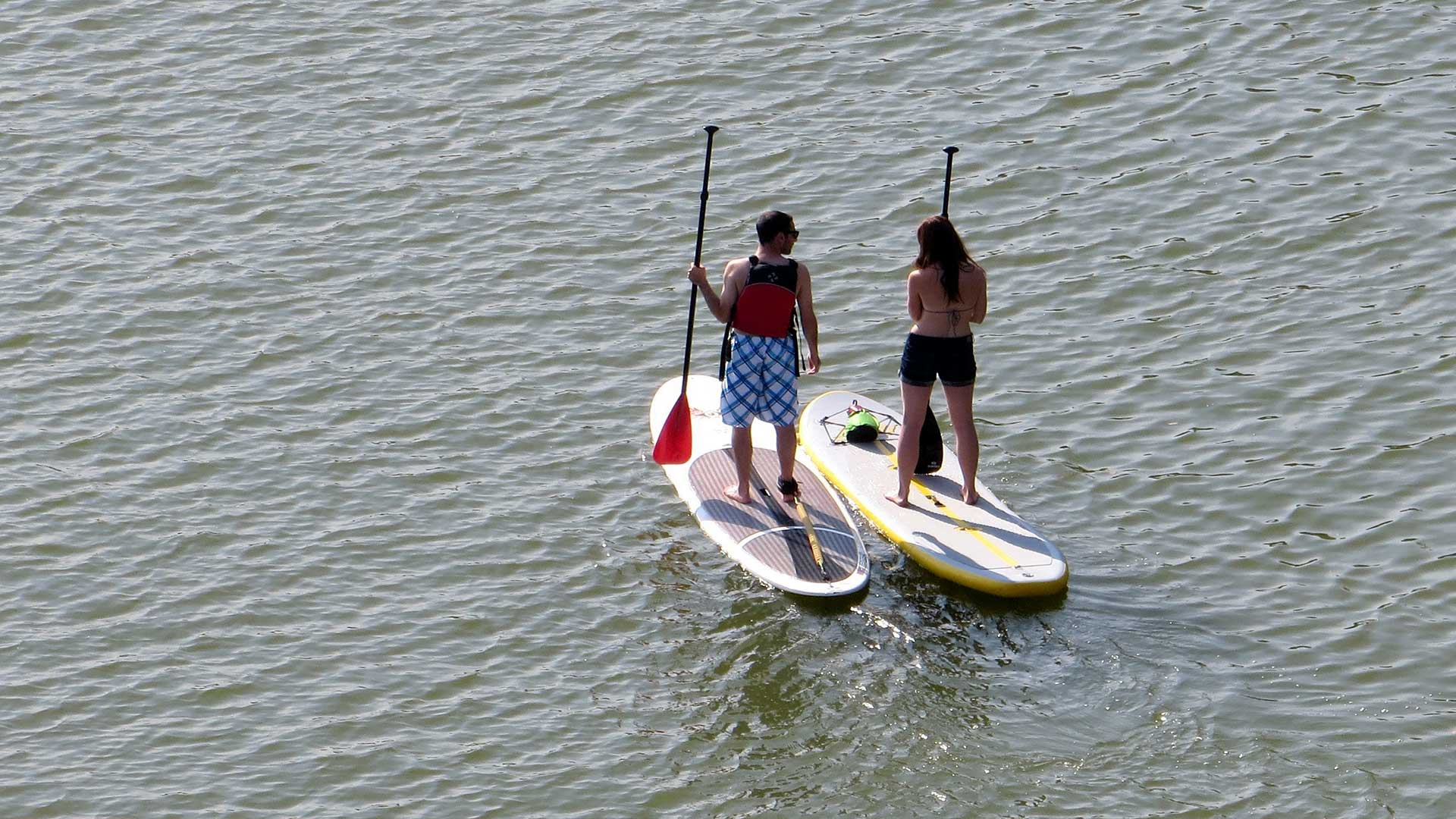 7-Paddle-Boarder-Pile-Up-Brings-Lake-Traffic-to-a-Standstill.jpg