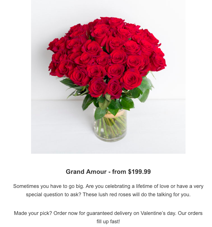 flower newsletter