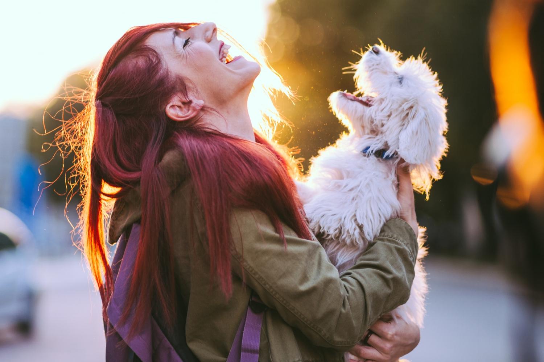 best-dog-trainer-in-charleston-sc