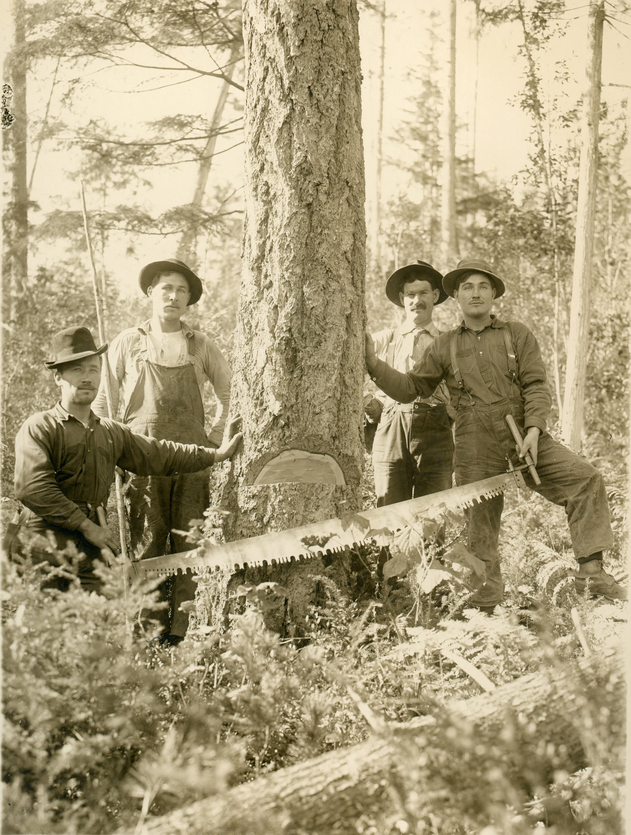 Photo 2309.0158: Logging crew from the Deschamps Mill, circa 1910. Names unknown.