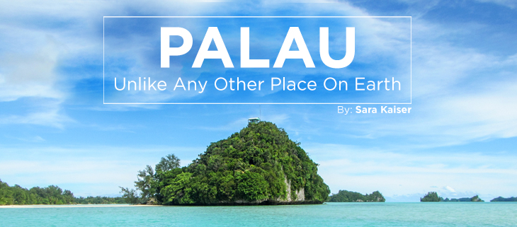 island-conservation-preventing-extinctions-palau-feat.jpg