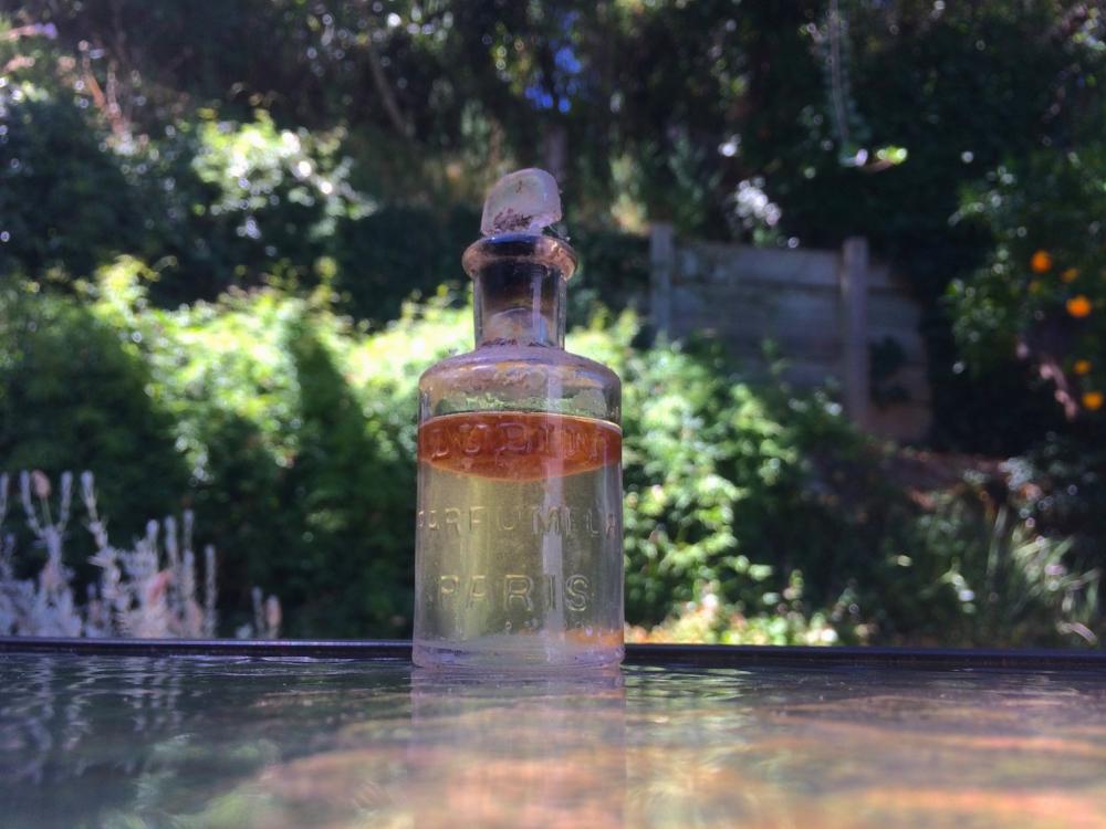 Perfume bottle from Wreden.jpg