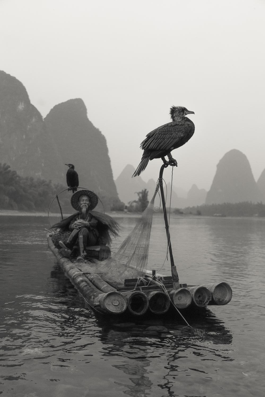 comorant_fisherman_12.jpg
