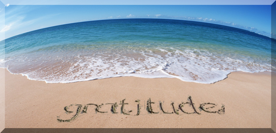 gratitude-1.png