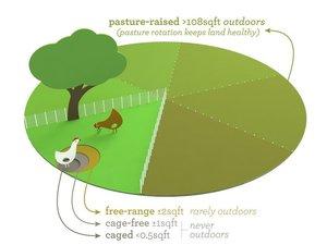 Free-range-diagram.jpg