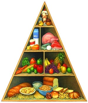 Goverment Pyramid.jpg