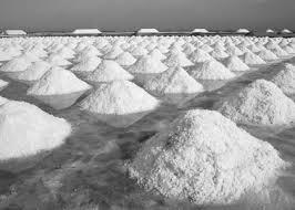 salt ponds.jpg