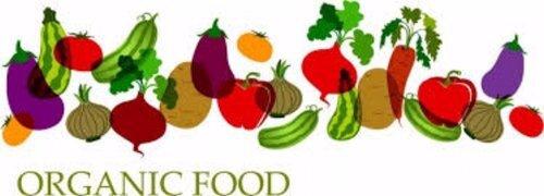 organic%2Bfoods%2Bbanner.jpg