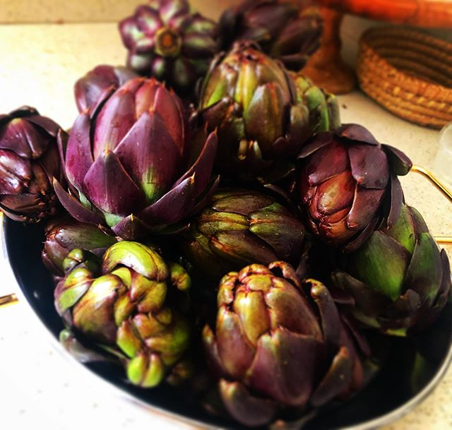 Absolutely divine purple artichokes grown by @lapaau_farm ! Excited to preserve these and incorporate into our upcoming menus! #maui #locavore #privatechef #locallysourced