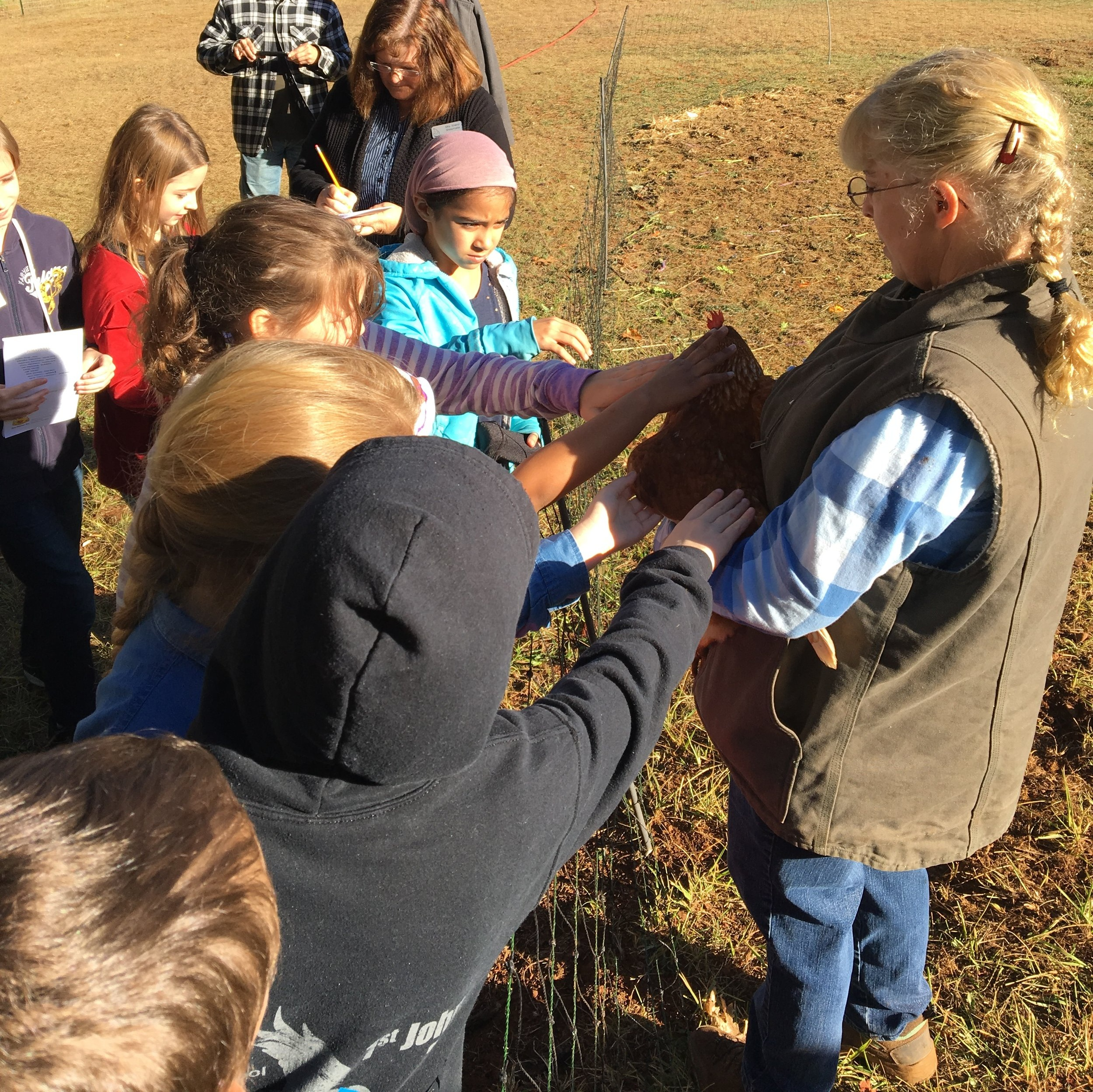 Outdoor Education - Ages K - Adult
