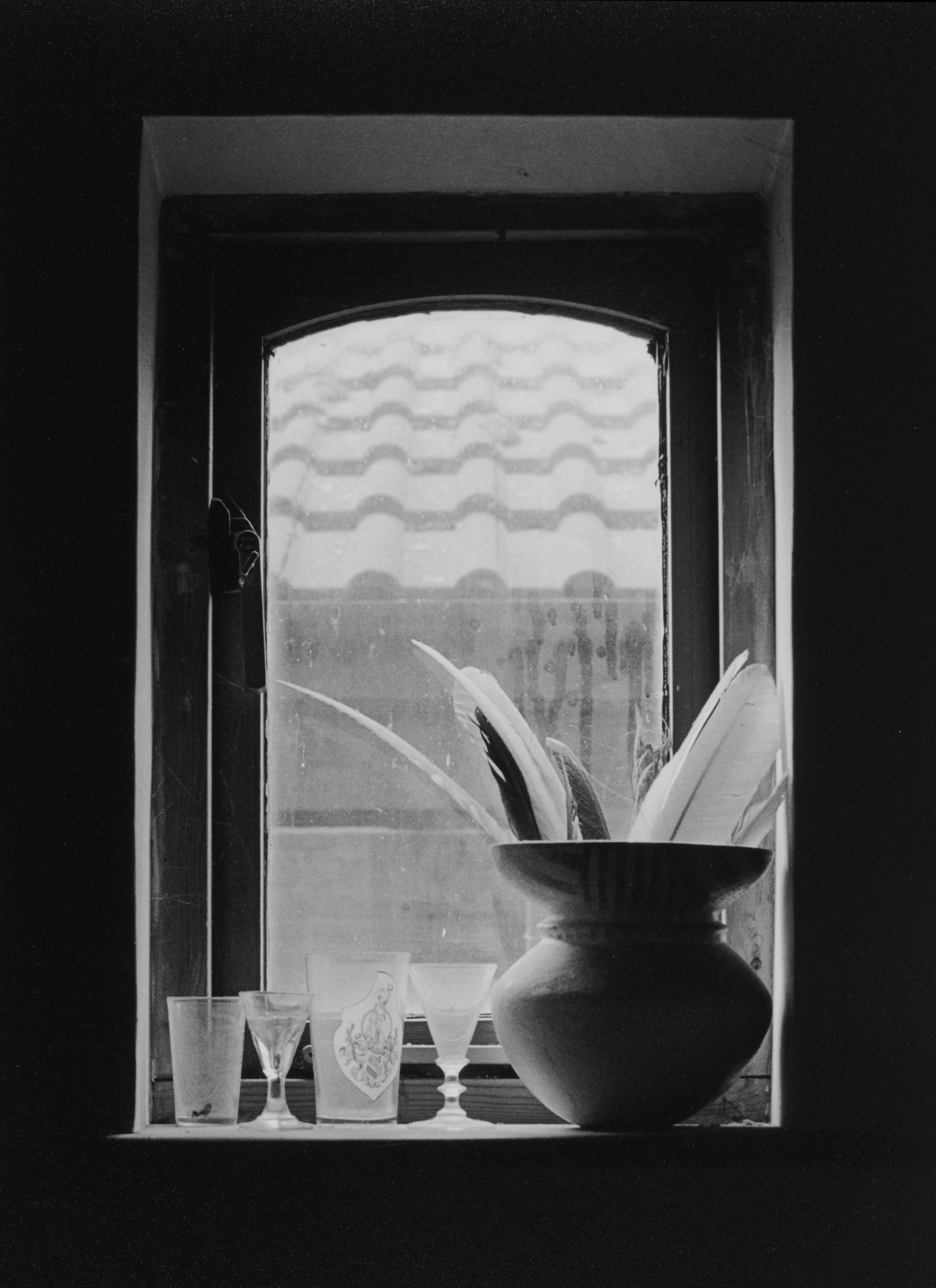Lotte Attwood, Vase of Feathers