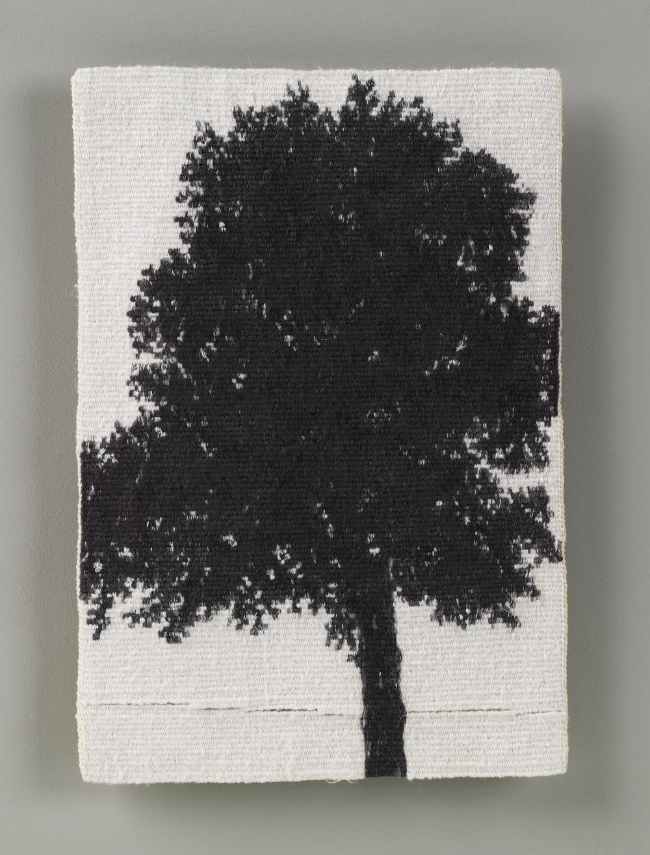Sara Brennan, Park Tree II 2016, Tapestry: cotton, wool, silk, 21 x 15 cms