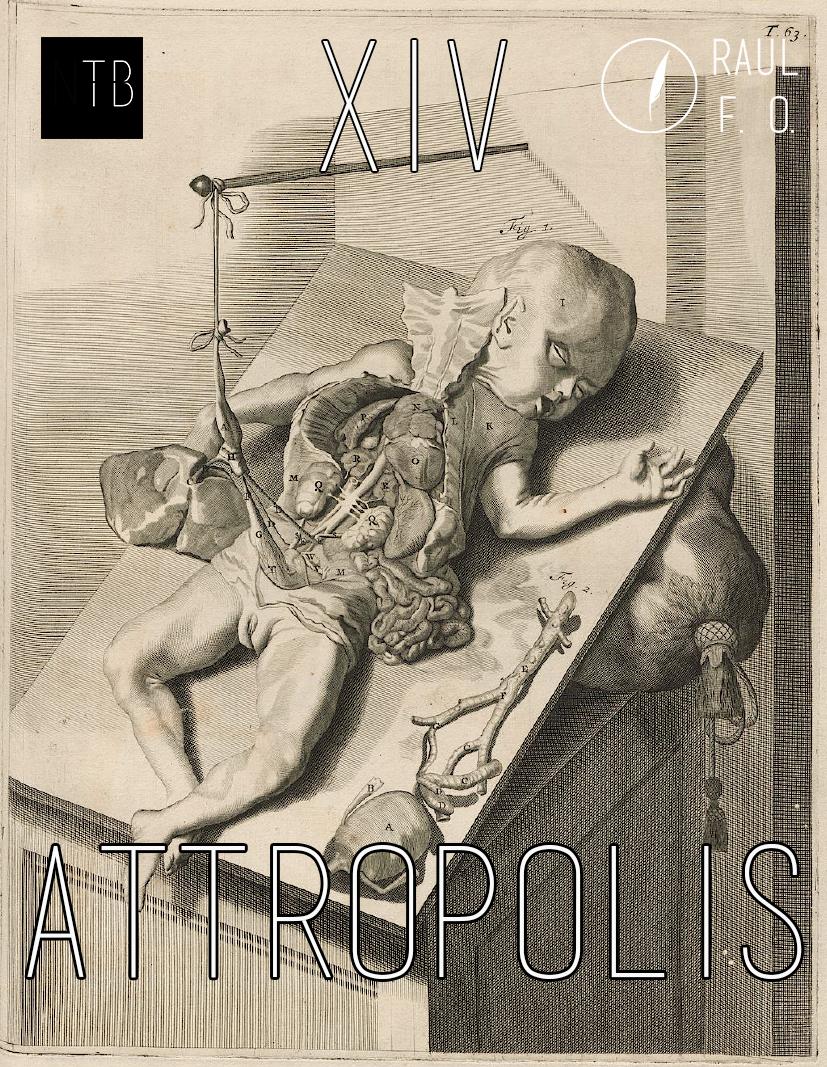 attropolis14.jpg