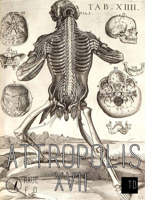 attropolis17.jpg