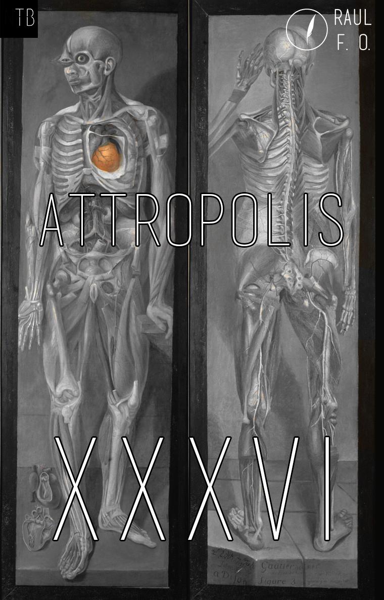 attropolis36.jpg