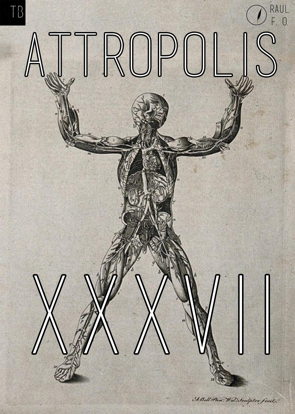 attropolis37.jpg