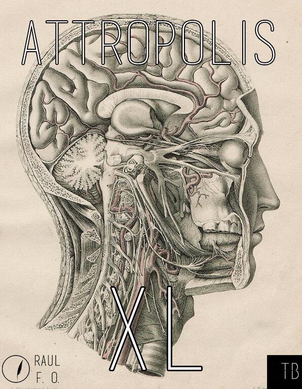 attropolis40.jpg