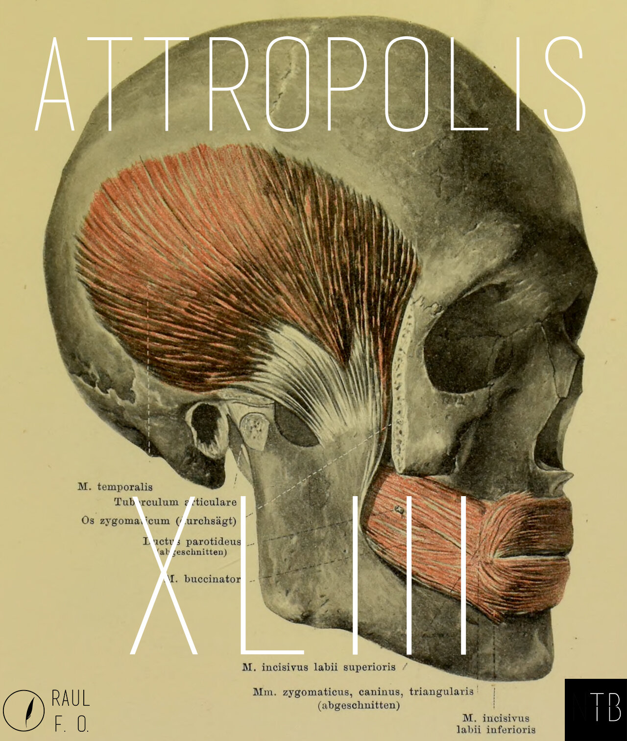 attropolis43.jpg