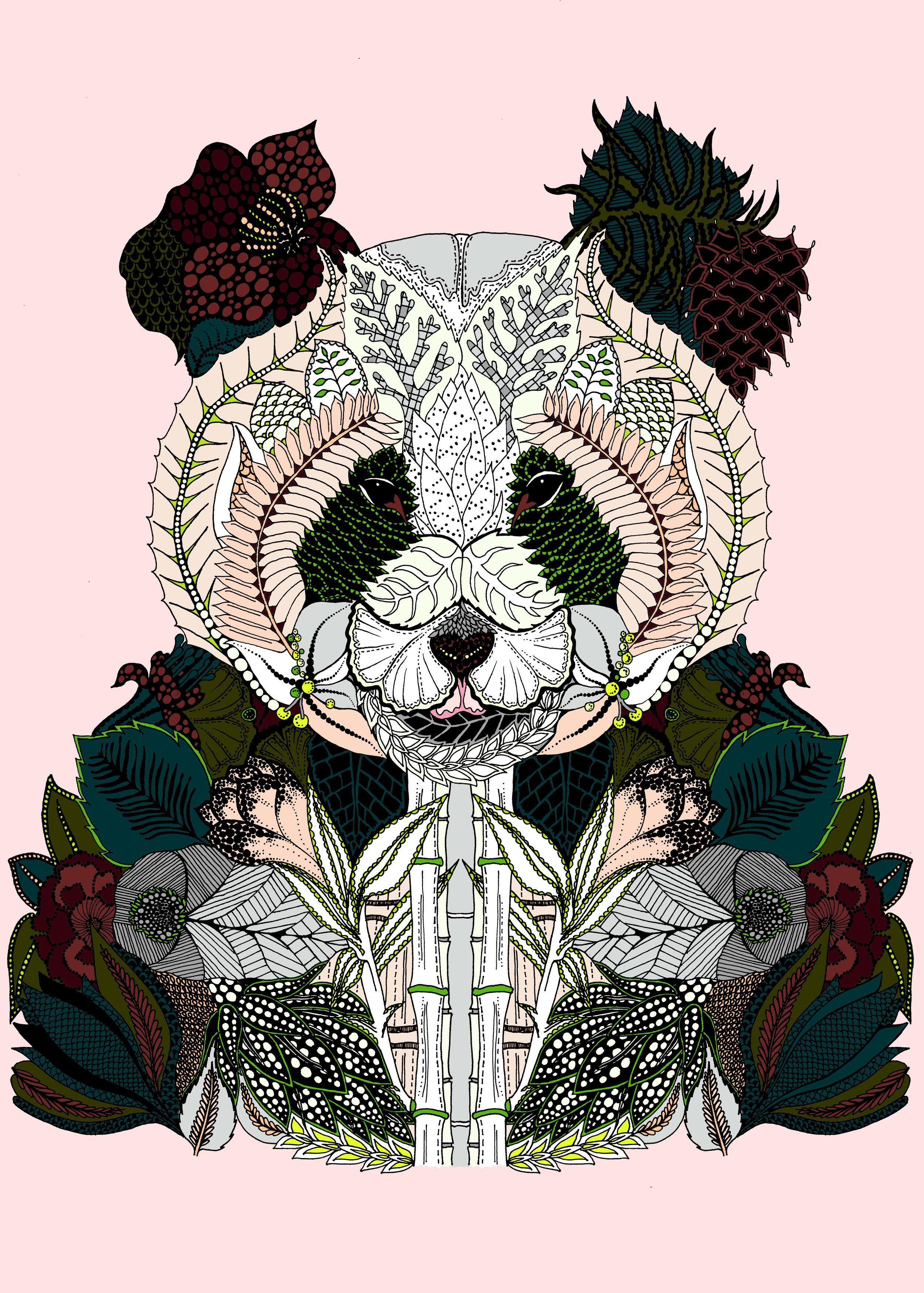 coloiur panda MASTER pink.jpg