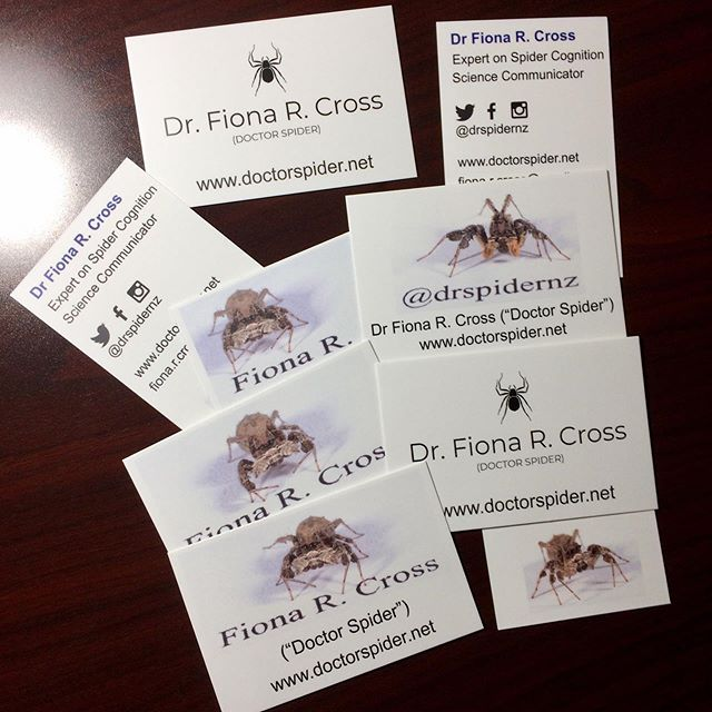 Just in time for #APA2019 (the annual convention of the American Psychological Association) - my brand new business cards have arrived! I decided to update my cards with Portia photos. 😄 The conference is being held in Chicago this year, and my invited talk is on Friday morning #Arachnologist #BusinessCards #Spider #Spiders #SpidersOfInstagram #Arachnid #ArachnidsOfInstagram #InstaSpider #SpiderDay #JumpingSpider #Salticid #Salticidae #Portia #PortiaAfricana #Macro #MacroPhotography #MacroPerfection #Nature #NaturePhotography #NatureLovers #Cute #SciComm #ScienceCommunication #WomenInScience #WomenInSTEM #LoveSpiders #SpidersAreCool #SpidersAreAwesome #NoFilter