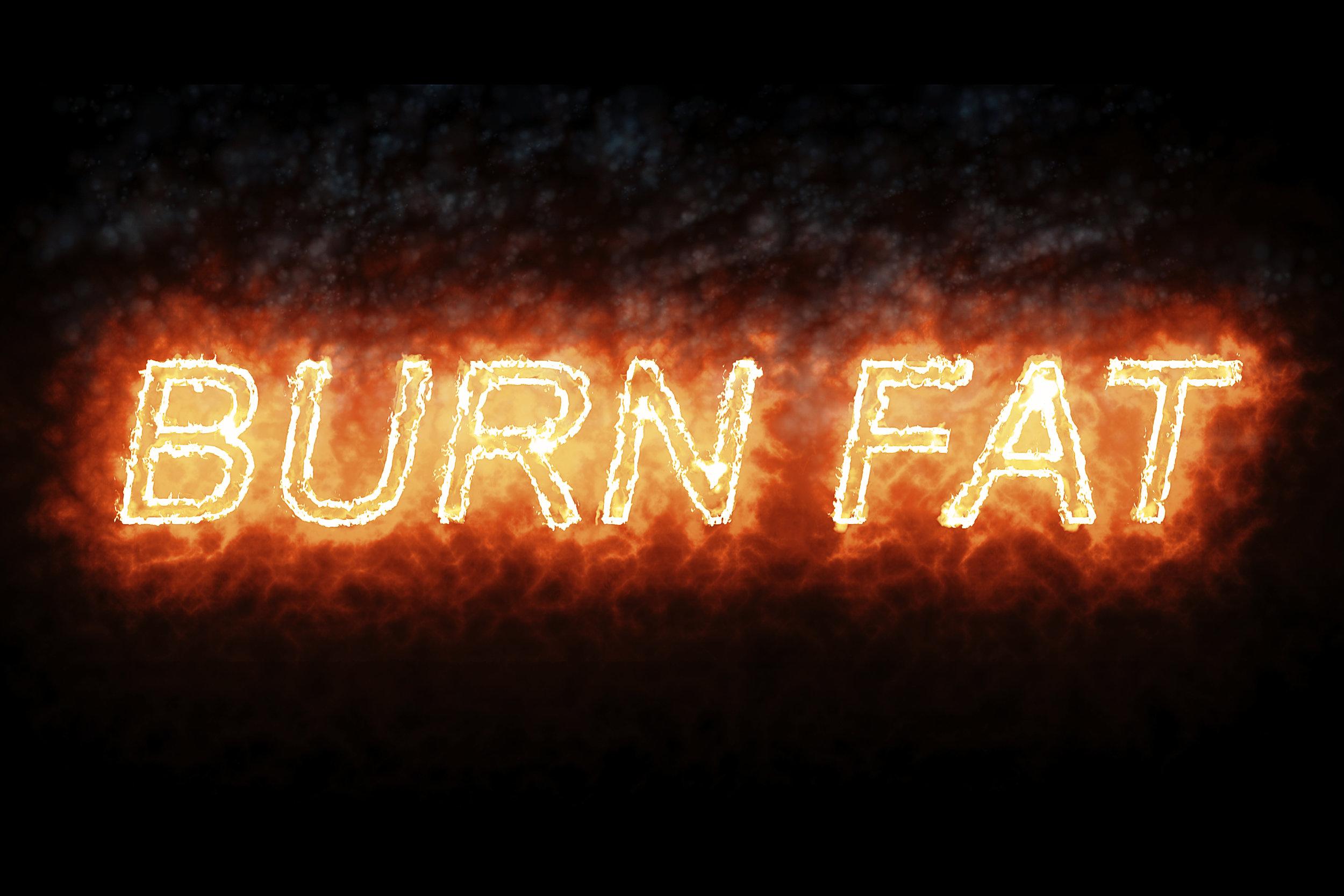 BWFS Burn Fat.jpg